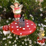 Create a Container Fairy Garden