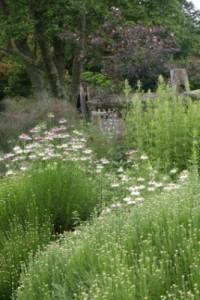 Meadow-Garden