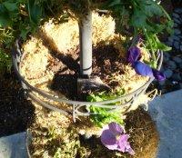 planting-hanging-basket