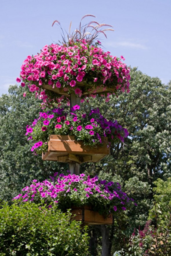 Vertical Gardening Ideas 4 create a living wall of leaves Vertical Gardening Ideas