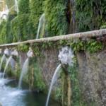 Water Gardens History