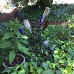 Garden Bottles