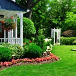 Basic Steps for Designing Gardens